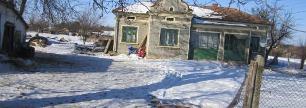 (Bulgarian) Дворно място в с. Карапелит с площ от 3000 кв.м., ведно с построени сгради, ID: 1448/16