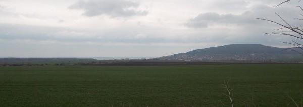 Нива 5,657 дка, село Рогачево, обл. Добрич, ID: 2487/12