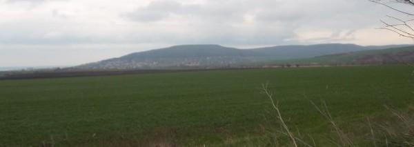 Нива 5,655 дка, село Рогачево, обл. Добрич, ID: 2485/12