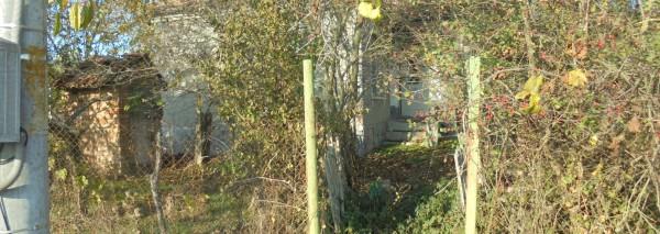 (Bulgarian) Къща с площ 35 кв.м. и Дворно място с площ 1350 кв.м, с. Ведрина, общ. Добричка, ID: 771/19