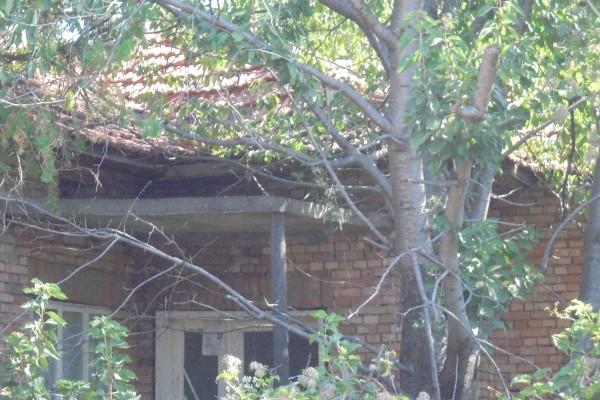 Къща с площ 80 кв.м. и Дворно място с площ 1712 кв.м, с. Честименско, общ. Тервел, ID: 457/18