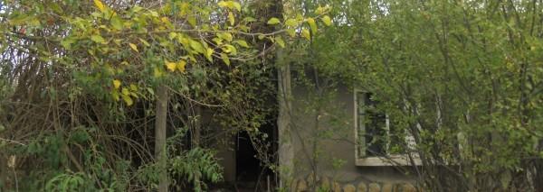 Дворно място с площ. 1140 кв.м. и къща с площ 100 кв.м., с. Проф. Златарски, общ. Тервел, ID: 566/20